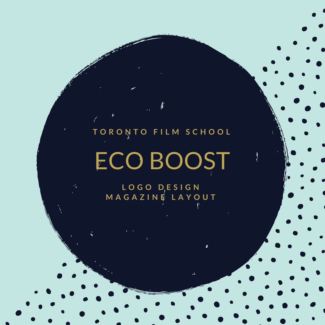 Eco Boost Project